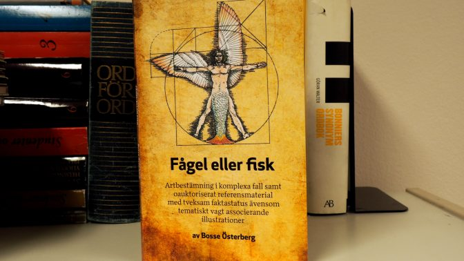 Bokrecension: Fågel eller fisk